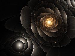 Gold and black fractal flower