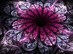 Dark purple fractal flower